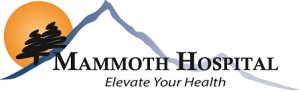 mammoth logo small